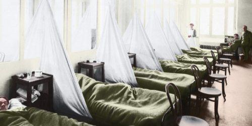 Grippe espagnol